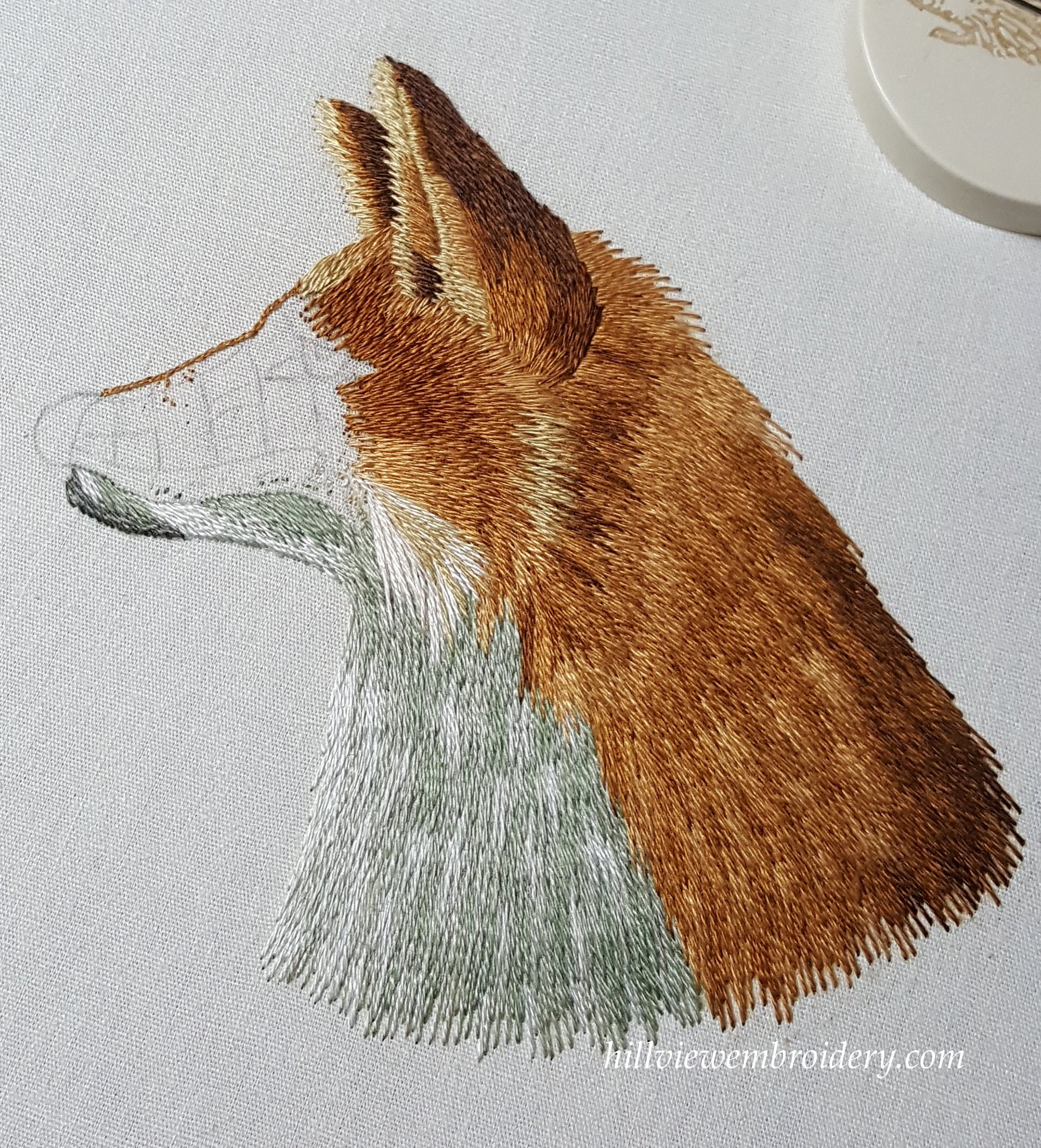 The Red Fox – working his chin